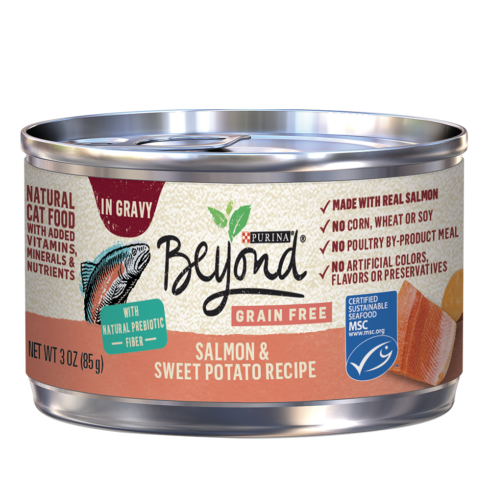 beyond-in-gravy-grain-free-salmon-wet-cat-food
