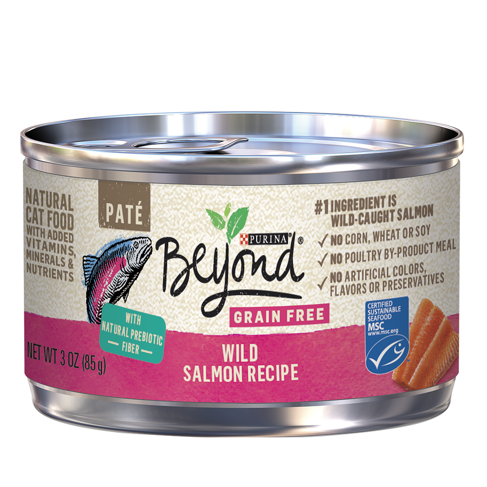 beyond-grain-free-wild-salmon-wet-cat-food