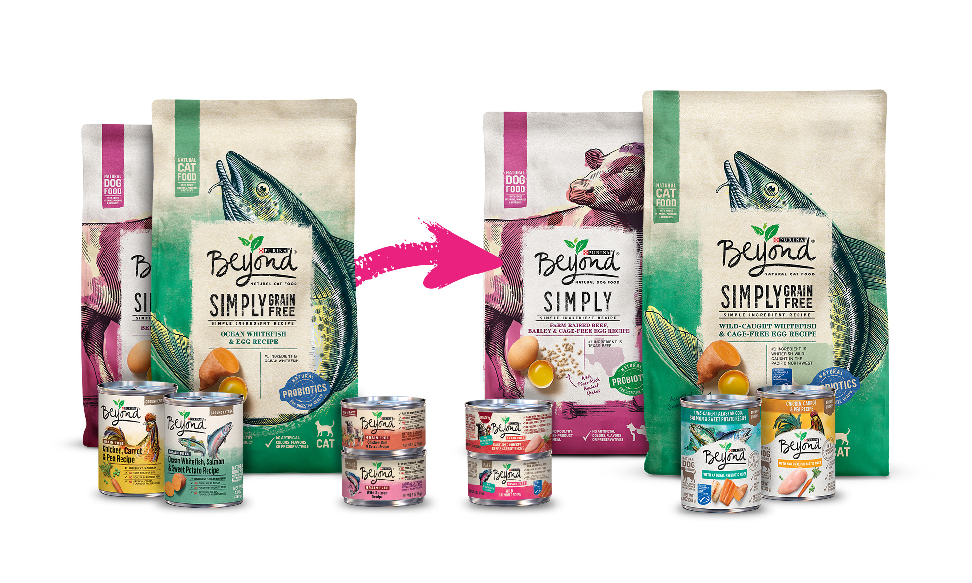 beyond pet food packaging old versus new