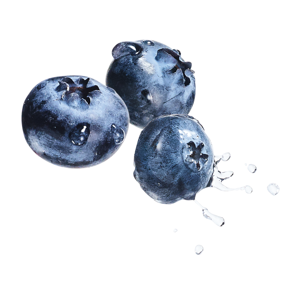beneful-playful-life-blueberry-ingredient