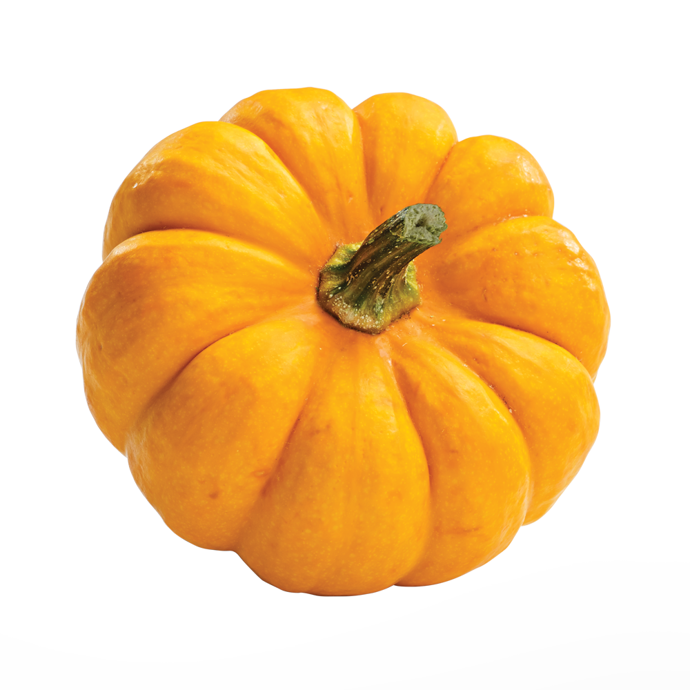 beneful-pumpkin-ingredient