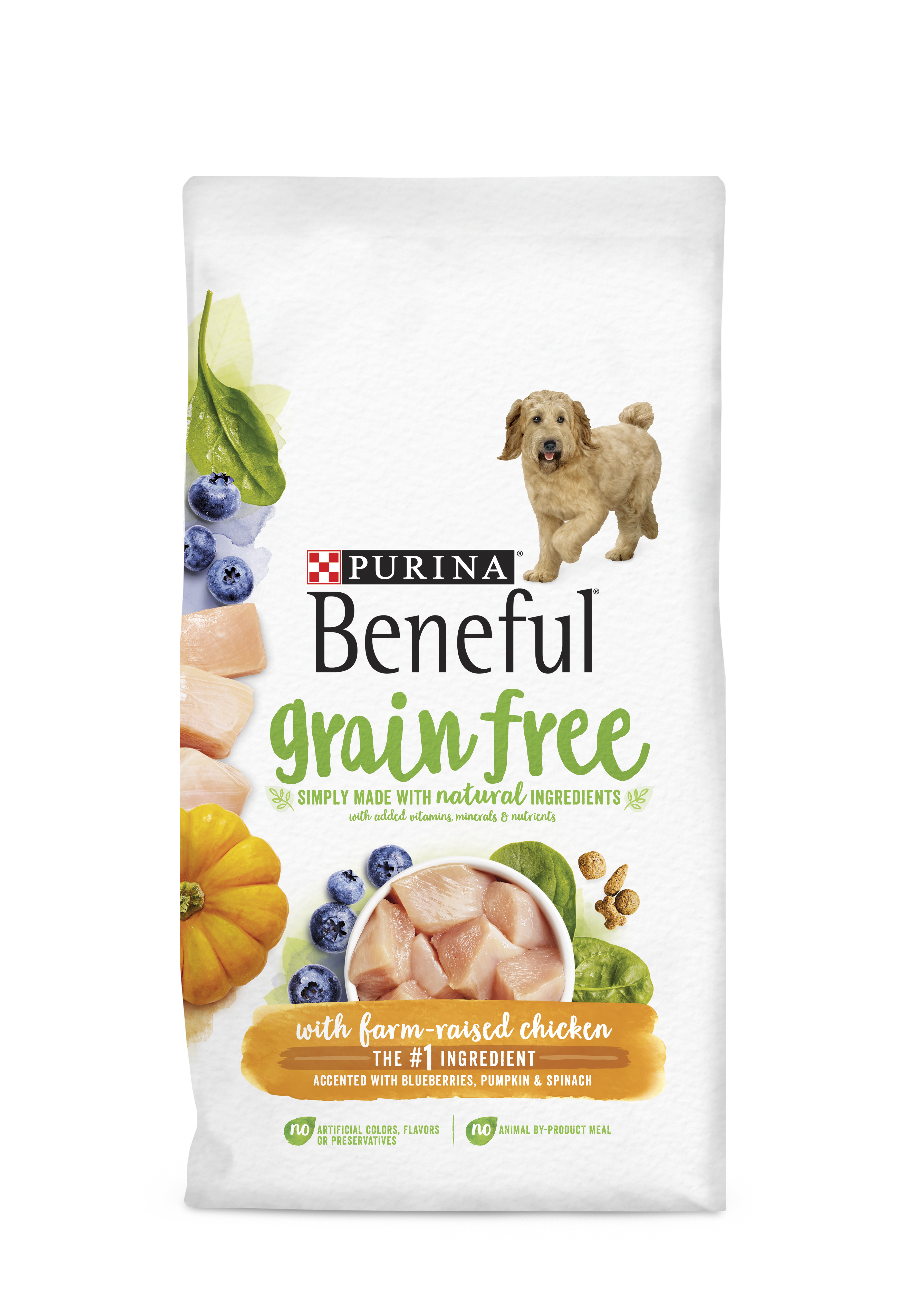 Beneful Grain Free Dry Dog Food with Chicken | Purina