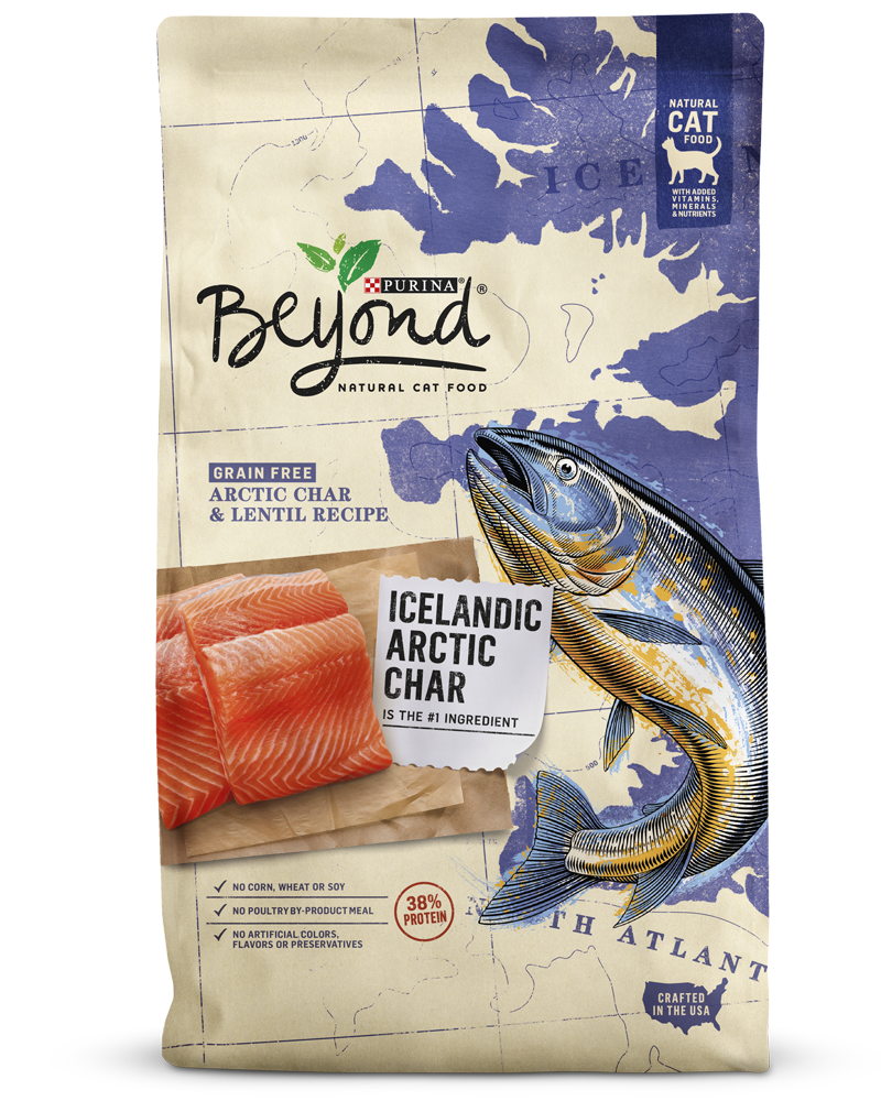 beyond-arctic-char-dry-cat-food