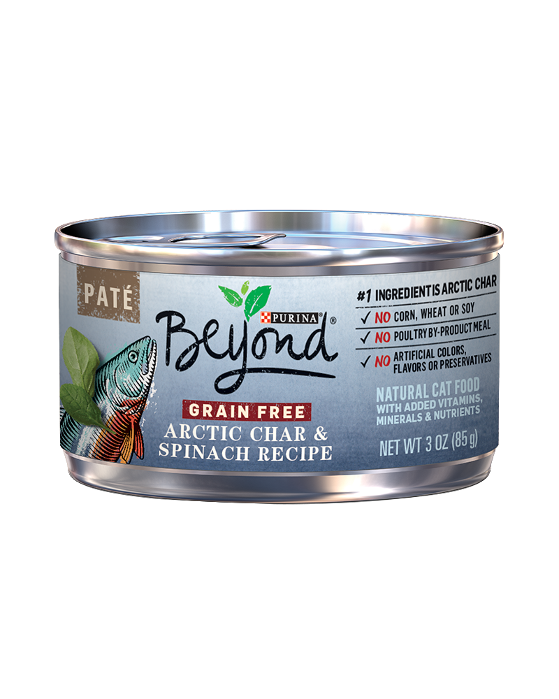 beyond-arctic-char-spinach-wet-cat-food