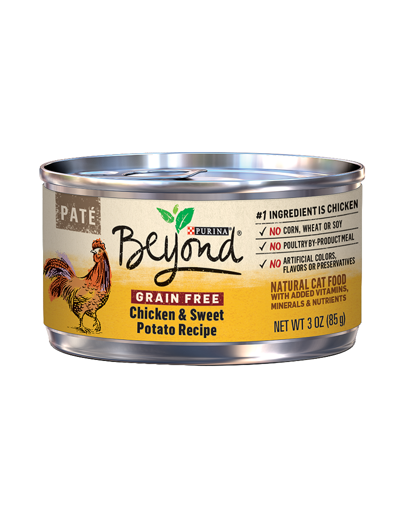 beyond-chicken-sweet-potato-wet-cat-food