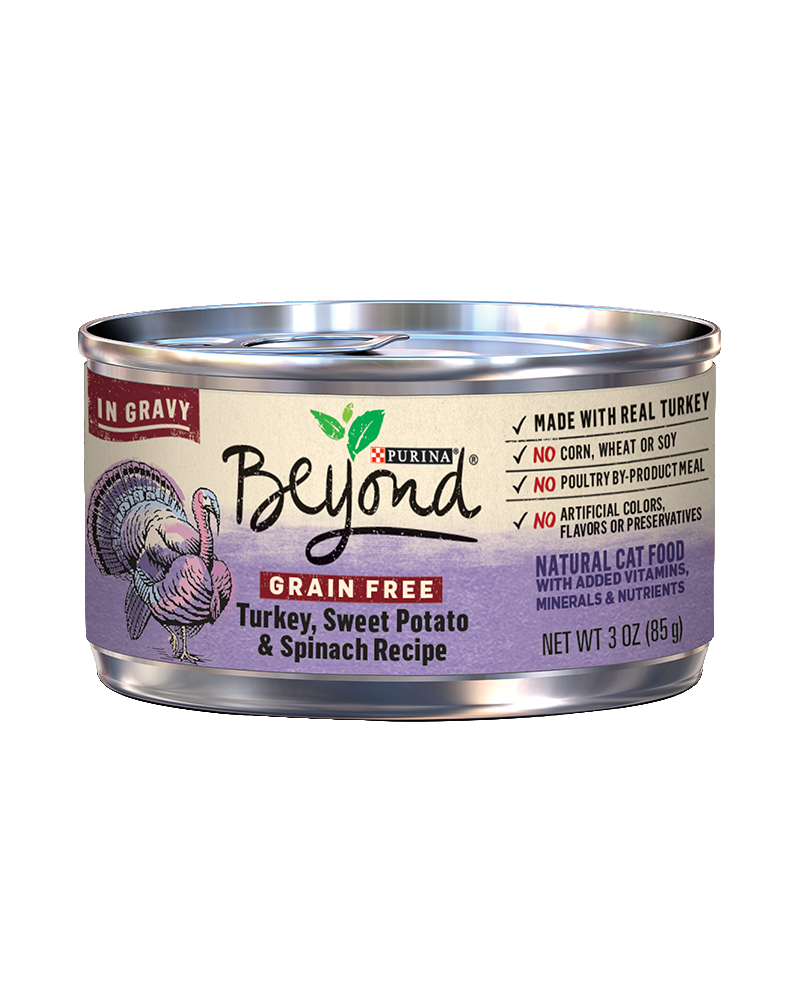 beyond-in-gravy-grain-free-turkey-sweet-potato-wet-cat-food