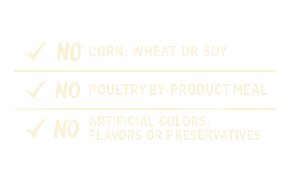 Beyond No Corn Chart icon