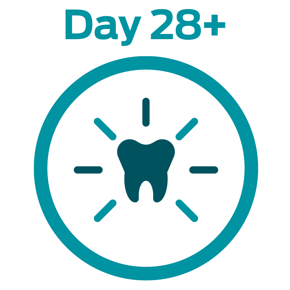 28DC Day Strong Teeth and healthy gums