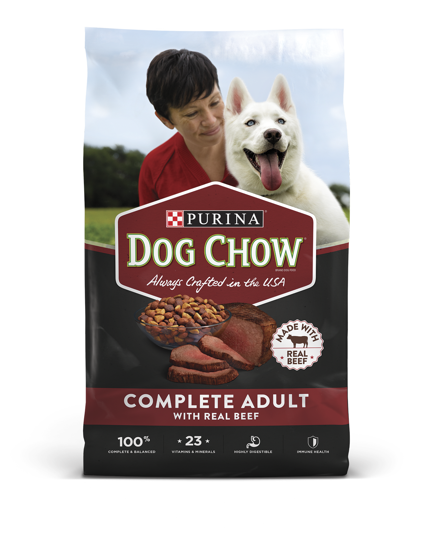 Complete Adult Beef Dry Dog Food
