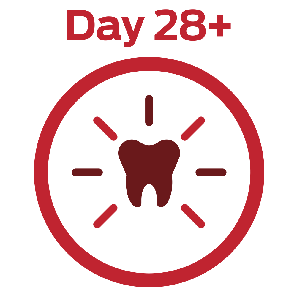 DAY 28+ STRONG TEETH AND HEALTHY GUMS