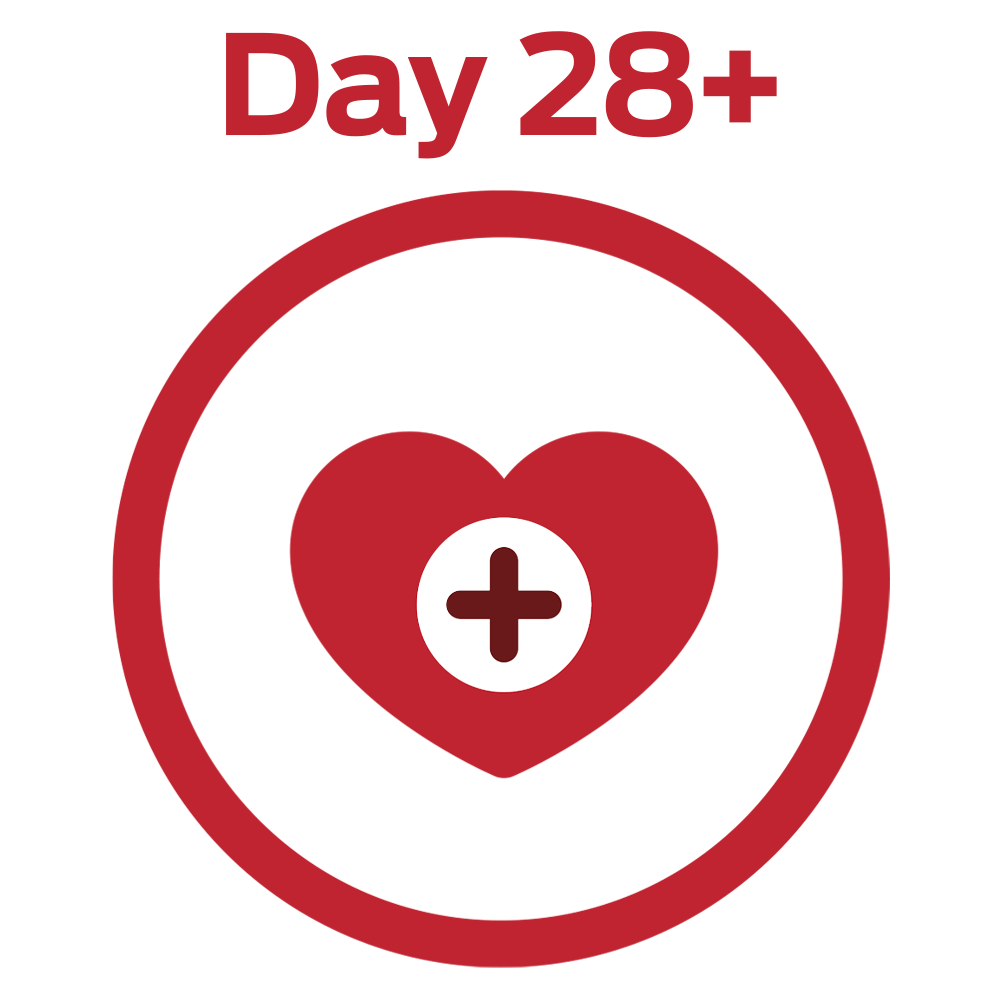 DAY 28+ STRONG MUSCLES INCLUDING A HEALTHY HEART