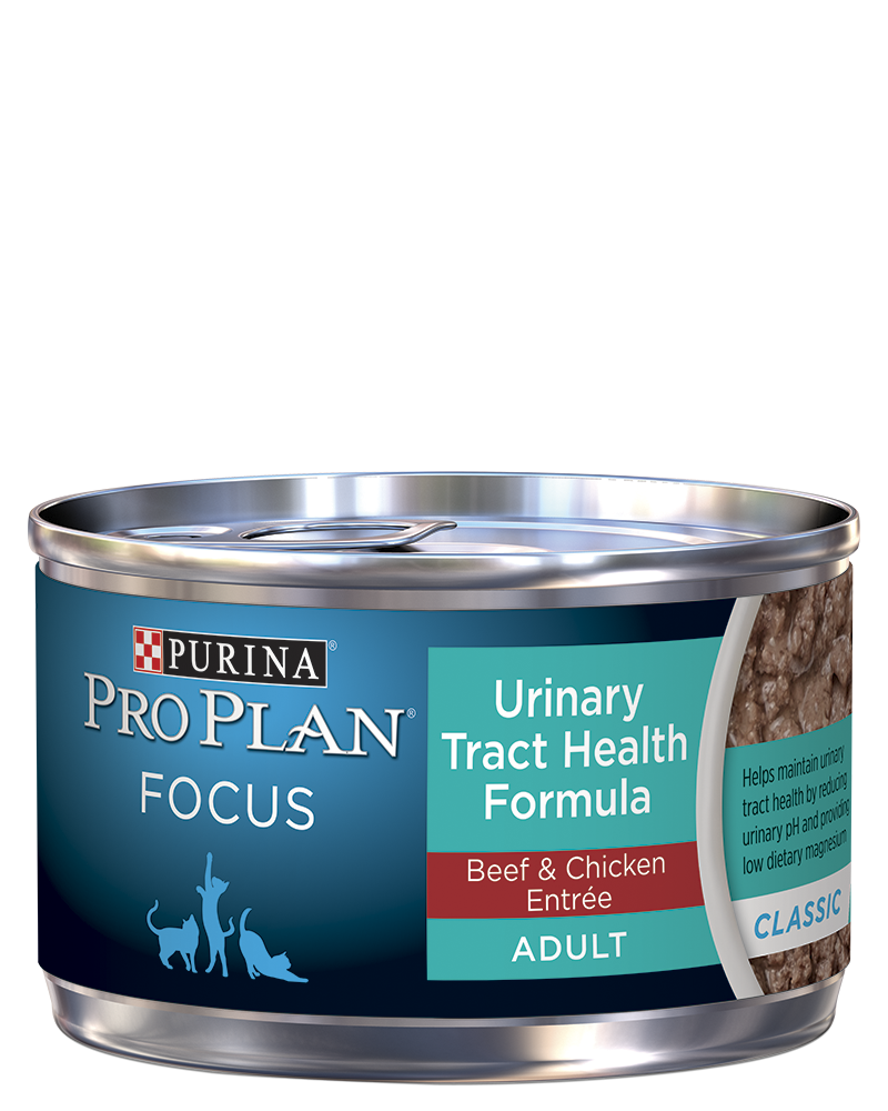 pro-plan-focus-adult-urinary-tract-health-formula-beef-chicken-entree-classic