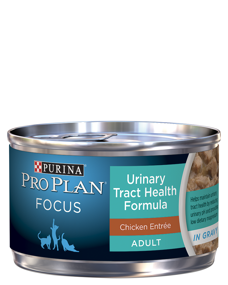 pro-plan-focus-adult-urinary-tract-health-formula-chicken-entree-in-gravy