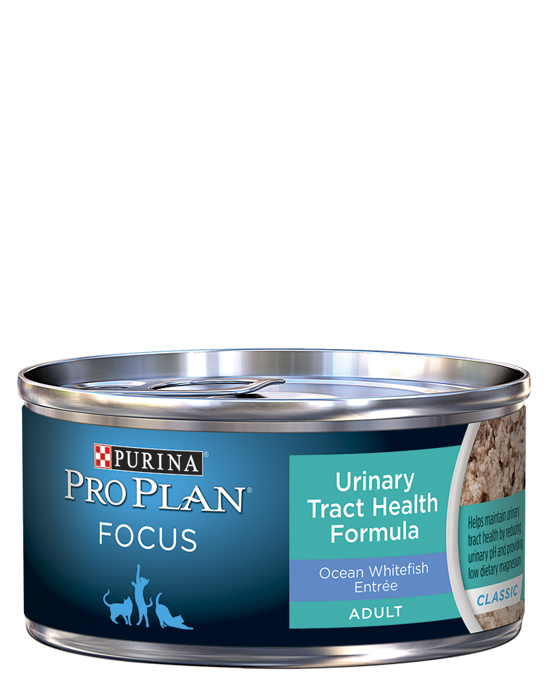pro-plan-focus-adult-urinary-tract-health-formula-ocean-whitefish-entree-classic