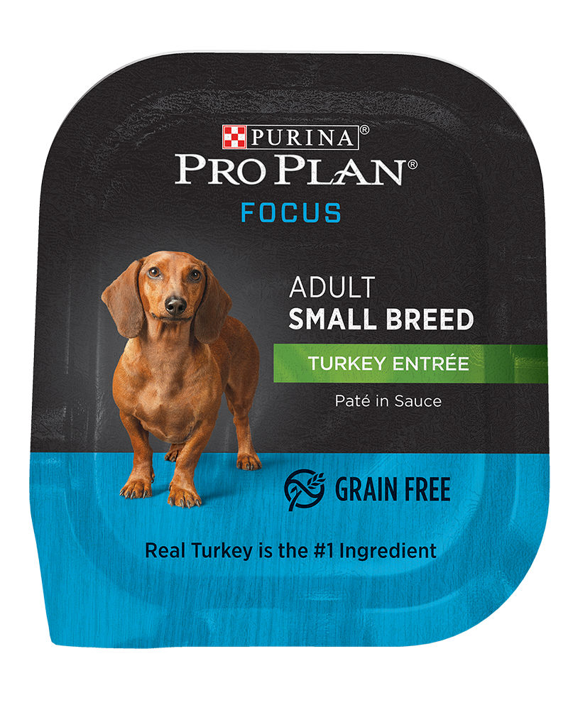 Purina Pro Plan FOCUS Adult Small Breed Turkey Entrée Wet Dog Food