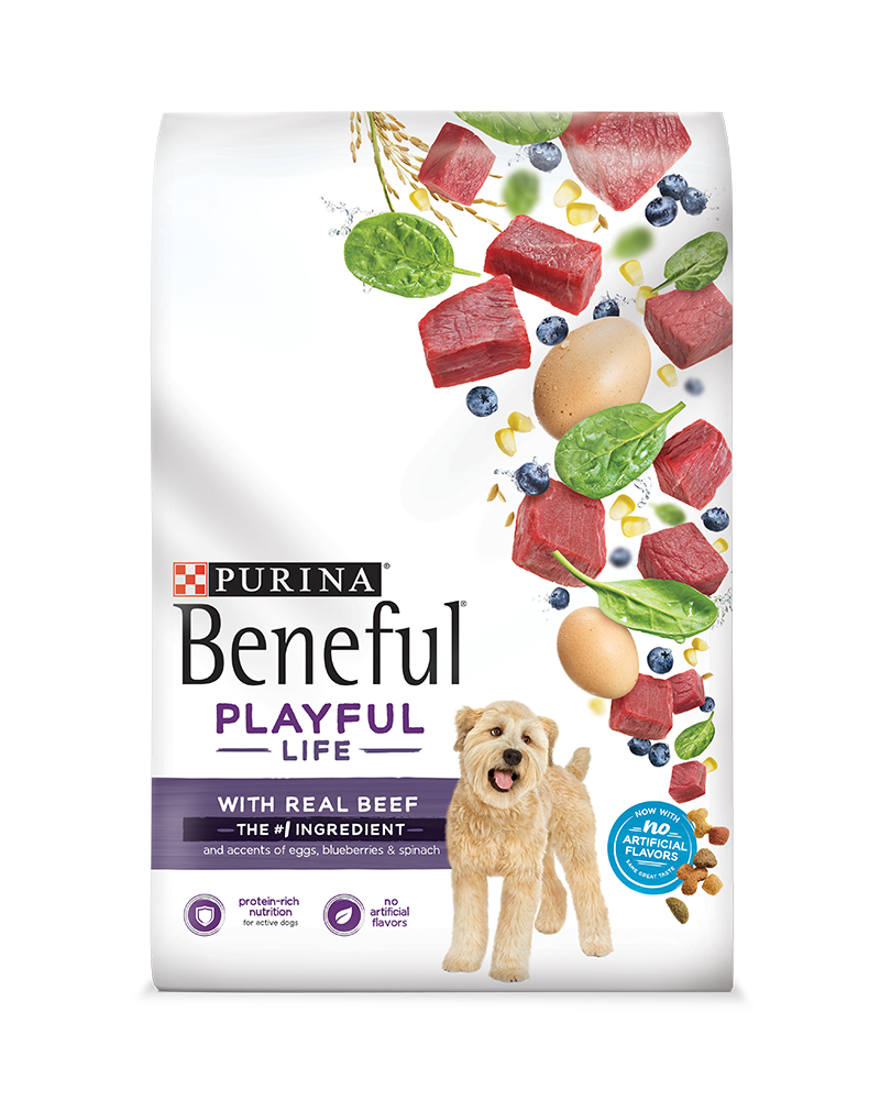 beneful-playful-life-dry-dog-food