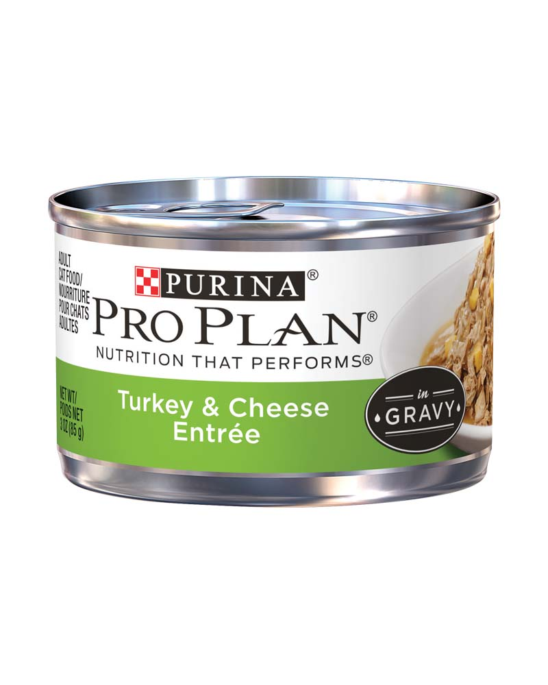 ProPlan Adult Turkey & Cheese Entree in Gravy