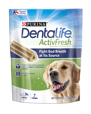 Dentalife ActivFresh Large