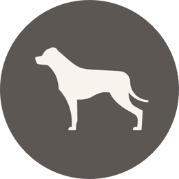 Dog Breed Placeholder
