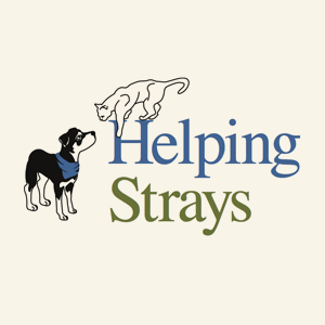 Helping Strays