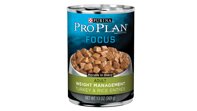 Focus Adult Weight Management Turkey & Rice Entrée Morsels in Gravy