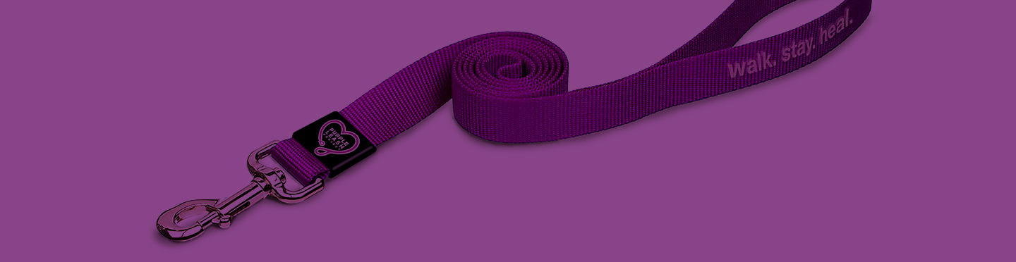 Purple Leash Background