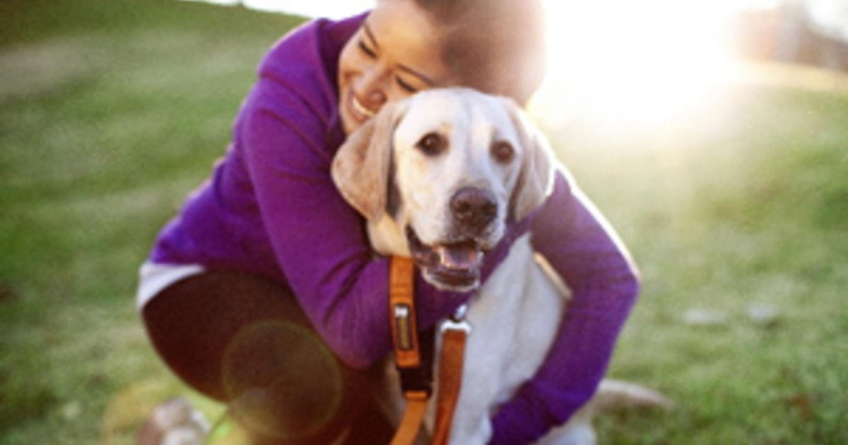 Spending time with dogs  Reduce Stress