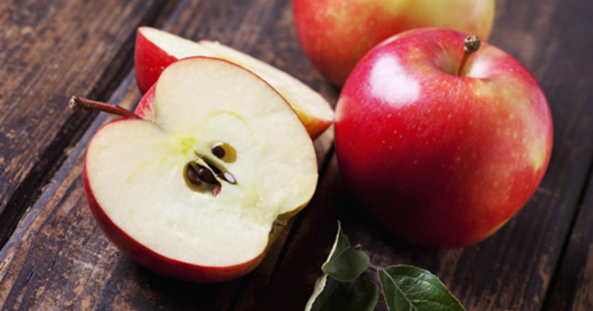 Can Dogs Eat Apples Purina