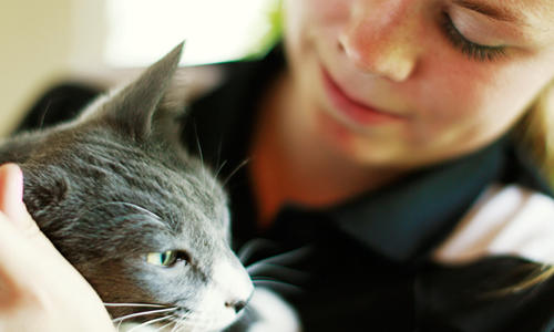 How can cats be good for children