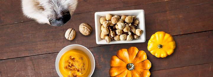 sweet potatoes pumpkins and nuts
