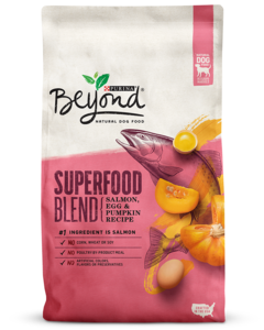 Superfood Blend Salmon, Egg & Pumpkin Recipe Natural Dry Dog Food