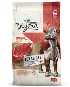 Beyond Dry Dog Food Beef Lentil