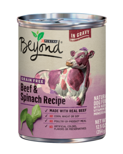 Beyond Grain-Free Beef & Spinach Recipe in Gravy