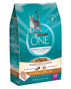 Purina ONE Chicken & Turkey Flavor