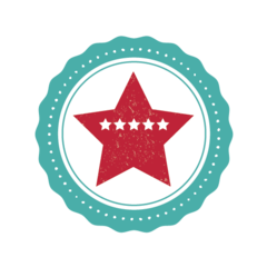 Pioneer Woman Average Rating Icon