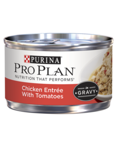 pro-plan-chicken-entree-with-tomatoes-in-gravy