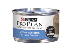 Pro plan Ocean Whitefish & Tuna Entree Wet Cat Food