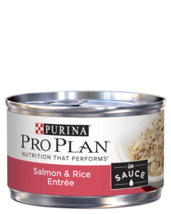 pro-plan-salmon-rice-entree-in-sauce