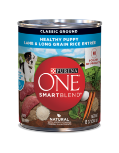 purina-one-classic-ground-healthy-puppy-wet-dog-food
