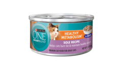 Purina One Wet Food
