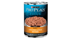 Focus Puppy Chicken & Rice Entrée Classic