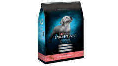 Focus Puppy Lamb & Rice Formula