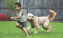 purina-benefits-of-kids-and-dogs-growing-up-together-500x300