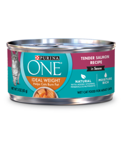 Purina ONE Ideal Weight Salmon Wet Cat Food