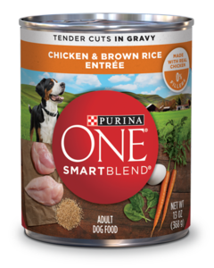 purina-one-tc-chicken-br-dog-food