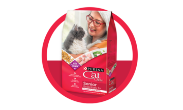 Senior dry cat food for joint health