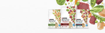 beneful-mainline-dry-dog-food