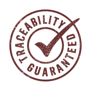 Beyond Traceability Icon