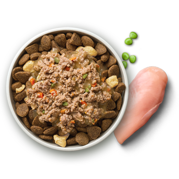 BEY_ProductsPage_Bowl_DOG