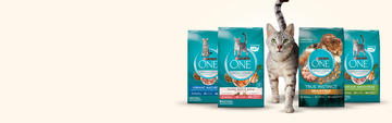 purina-one-find-the-right-cat-food